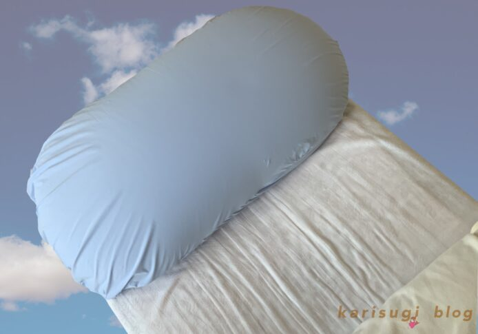 『雲に乗る夢枕』、レビュー